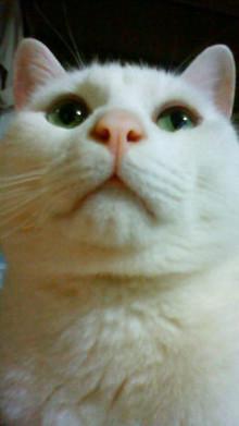 守口市少年少女合唱団 指導者のブログ-201205022138000.jpg